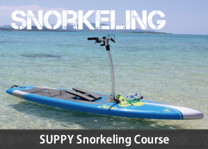 SUPPY and Snorkeling Course