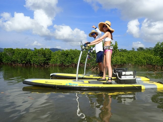 SUPPY Cruise in Mangrove Course写真04