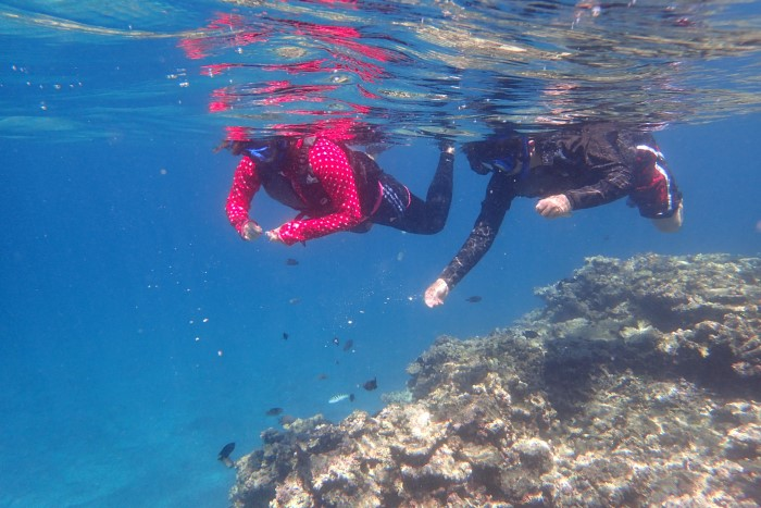 SUPPY and Snorkeling Course写真05